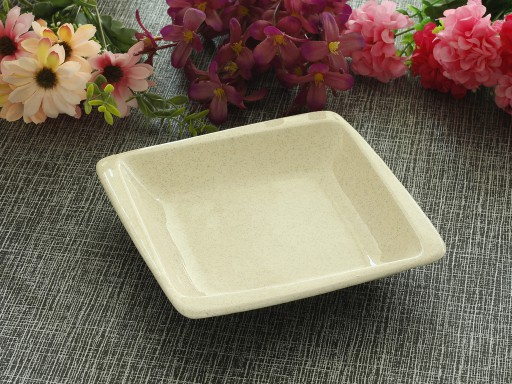 Square Food Plate